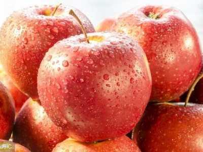 苹果牛奶循环食谱 苹果加运动能瘦多少